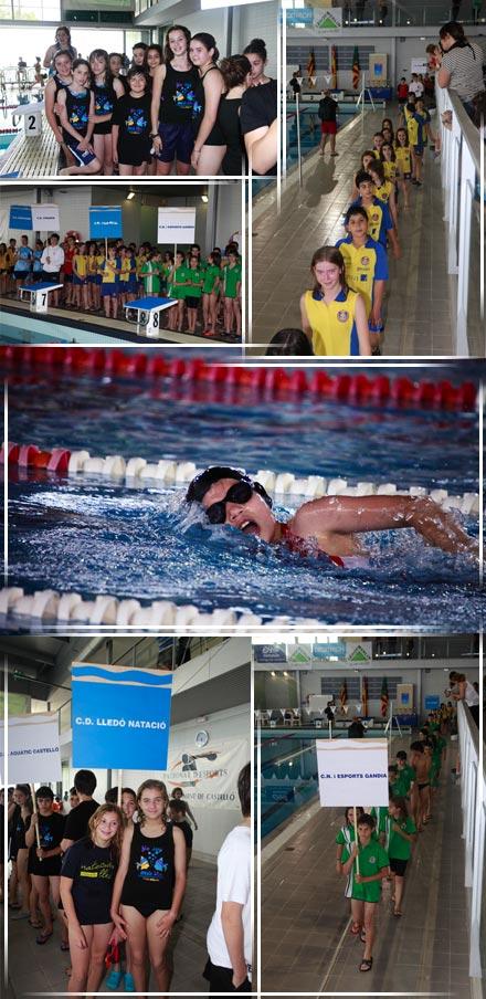 I trofeo aqu tic piscina municipal ol mpica castell n for Piscina olimpica castellon