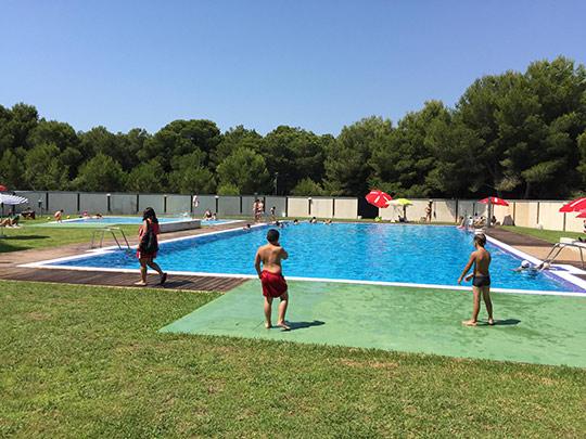 Piscinas en castellon en de termitas para todos los for Barredera piscina