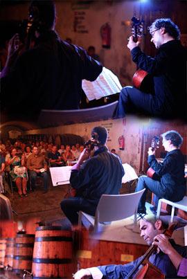 José Luís Ruiz del Puerto y Guillermo Pastrana en concierto en las Bodegas Carmelitano