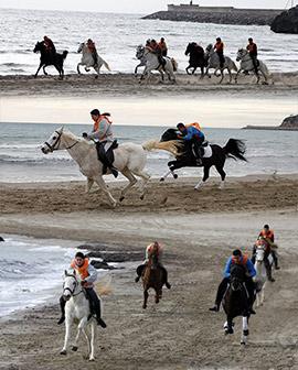 Carrera de caballos y burros en la Playa de La Concha de Oropesa