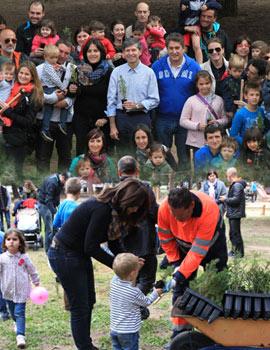 Nueva plantación de árboles en el Pinar