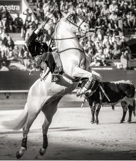 Estampas de la corrida de rejones del lunes de la Feria de Castellón