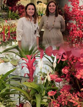La floristería Espai Vegetal comienza la navidad