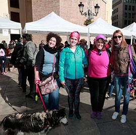 I marcha por la solidaridad y derecho de los animales en Castellón