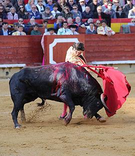 Perera, Morante y El Juli en la Feria de la Magdalena