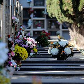 Castelló refuerza las medidas anticovid en los cementerios en la festividad de Todos los Santos