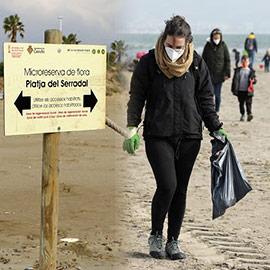 Jornadas de voluntariado ambiental para mejorar el ecosistema del chorlitejo patinegro de Castelló