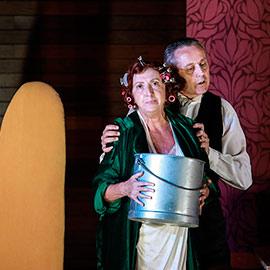 Hay que purgar a Totó, de Ágora teatro