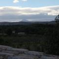 Bodega Vicente Flors